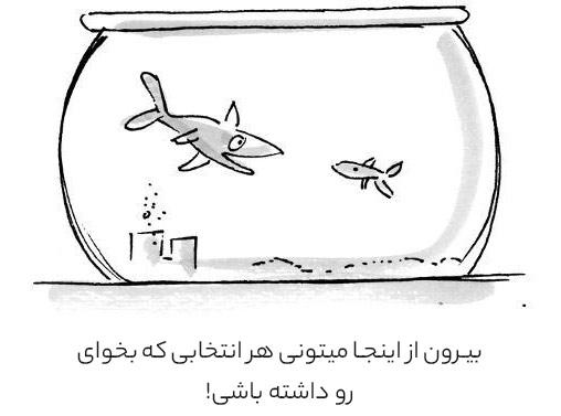 انتخاب های ماهی و آزادی